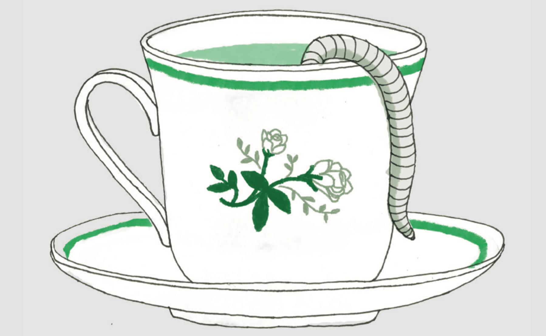 כיצד מכינים תה תולעים - מדע - מדע פלוס