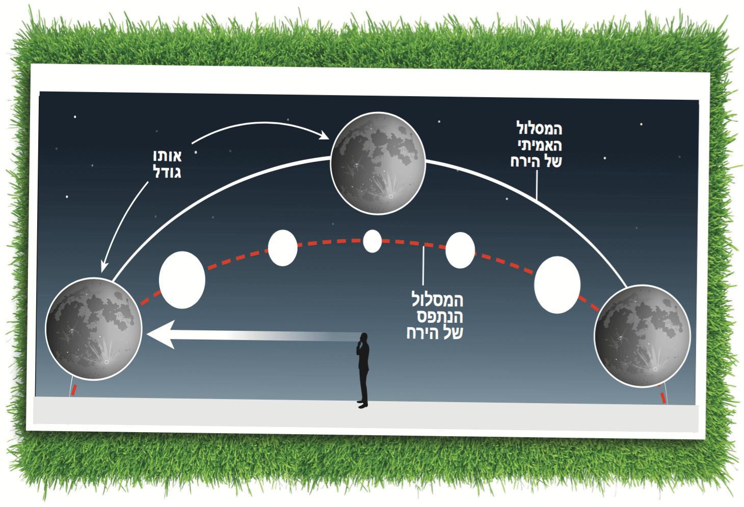 מופעי הירח והמוח שלנו בחלל - חלל - מדע פלוס
