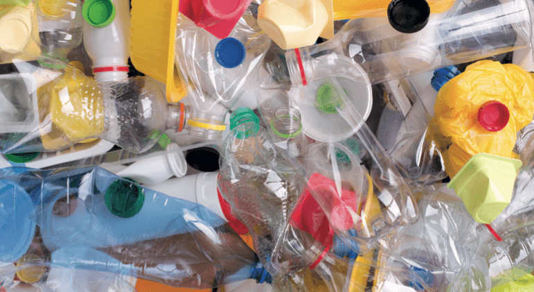 חיידק אוכל פלסטיק - מדע - מדע פלוס