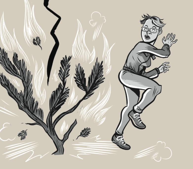 סיפורים מהשטח - הסנה הבוער - טבע - מדע פלוס