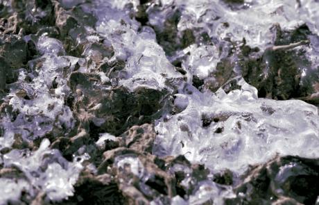 מה קבור באדמה קפואת-עד?