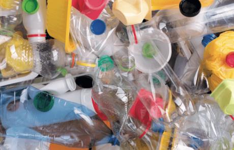 חיידק אוכל פלסטיק שמדענים הפכו לחזק יותר