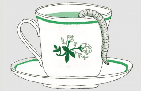 כיצד מכינים תה תולעים?
