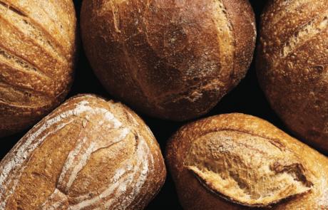 לחם שאור, מחמצת – סוד קטן ומלוכלך