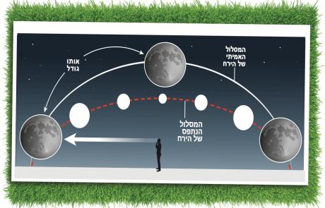 מופעי הירח והמוח שלנו בחלל